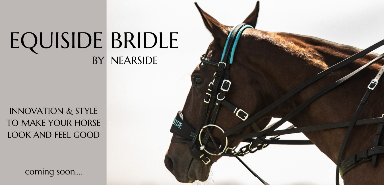 equiside bridle coming soon....